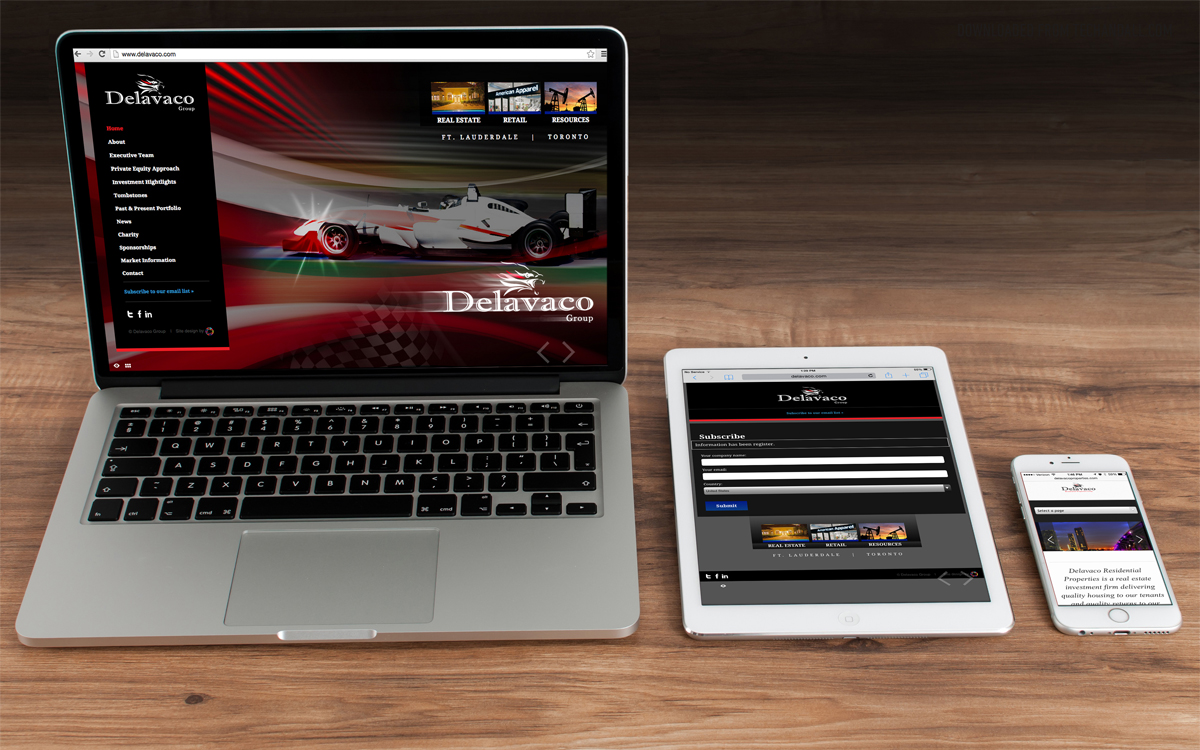 Otena_Concepts_Delavaco_Group_Responsive_Website