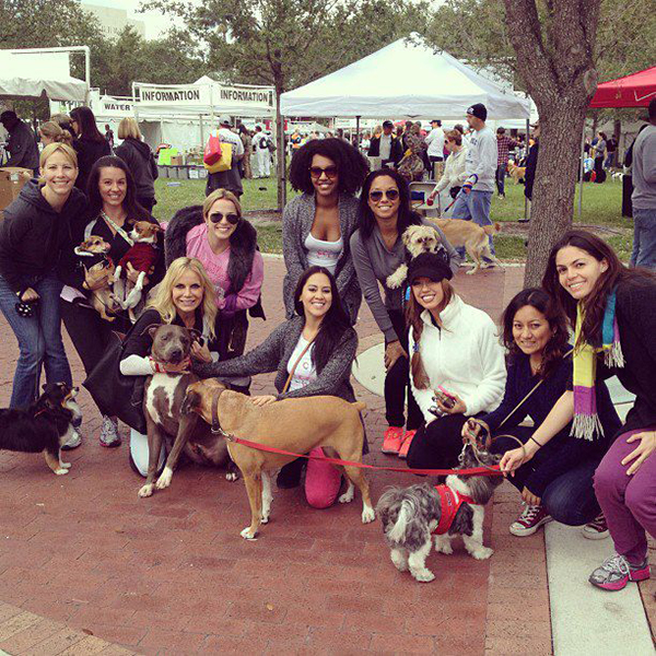 otena-concepts-HSOBC-walk-for-the-animals-1