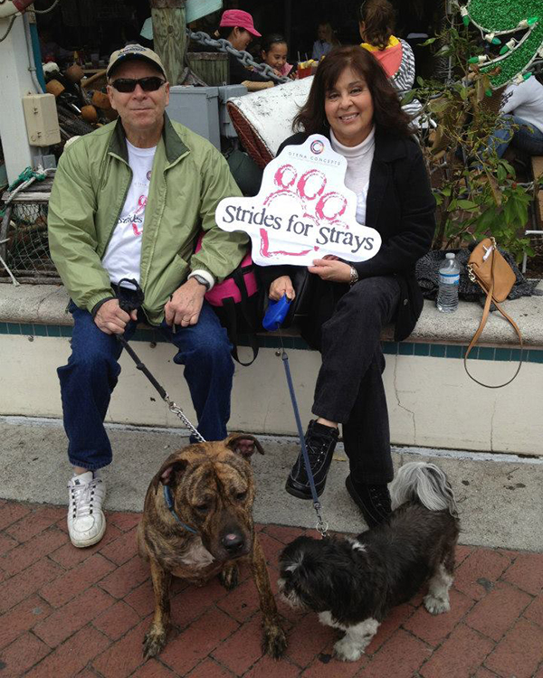 otena-concepts-HSOBC-walk-for-the-animals-27